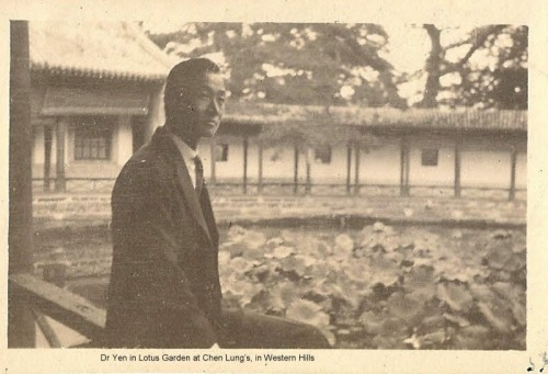 Dr_yen_in_lotus_garden